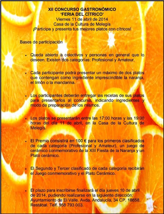 XII CONCURSO GASTRONÓMICO copia