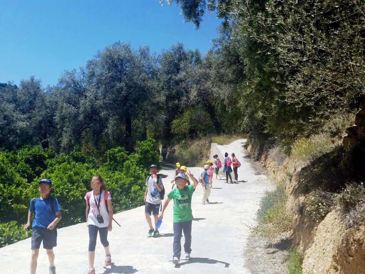 excursion cole alhama4